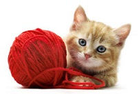 Decorative image of kitten with ball of yarn